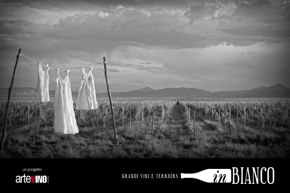 InBianco: degustazione di grandi vini bianchi europei