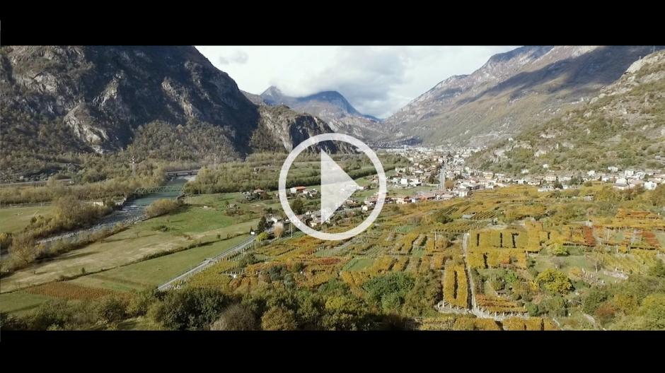 VIDEO 2 - CAREMA
