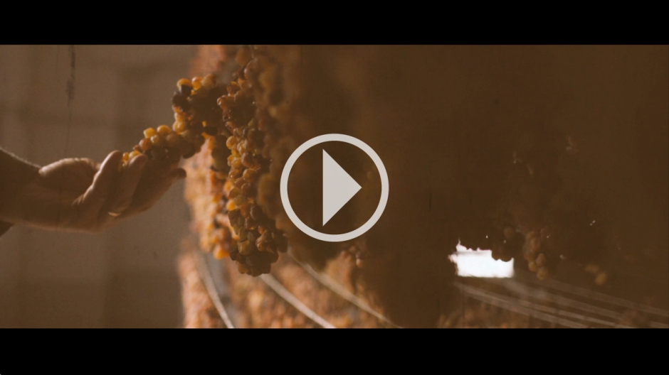 VIDEO 3 - CALUSO PASSITO
